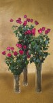 Ultimate Rose: Fresh Long Stemmed Red Roses with Clear Vase