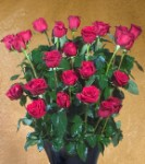 Ultimate Rose: 4ft Fresh Long Stem Red Rose Bouquet