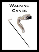 Pasotti Walking Canes