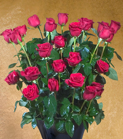 Ultimate Rose: 3ft Fresh Long Stem Red Rose Bouquet